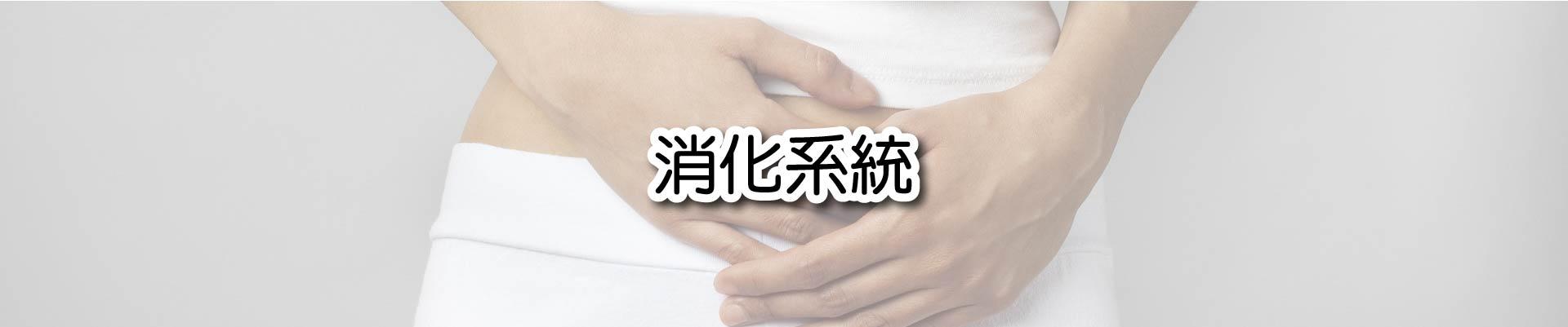 c-digestive-system-1-8.jpg